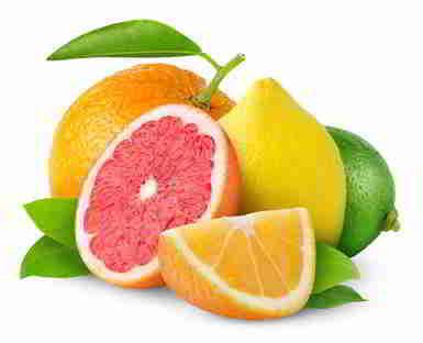 Grapefruit, Orange und Zitrone