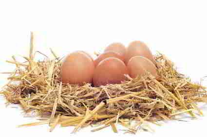 Proteine in Eiern