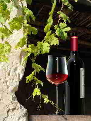 Kalorien Rotwein. Rotwein für die Gesundheit