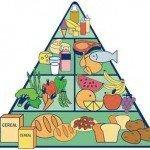 Die-Ernährungspyramide