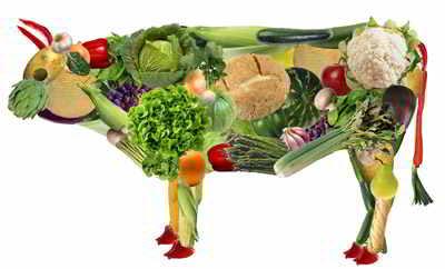 Vegetarische-Ernahrung–gesund